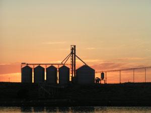grain-mill